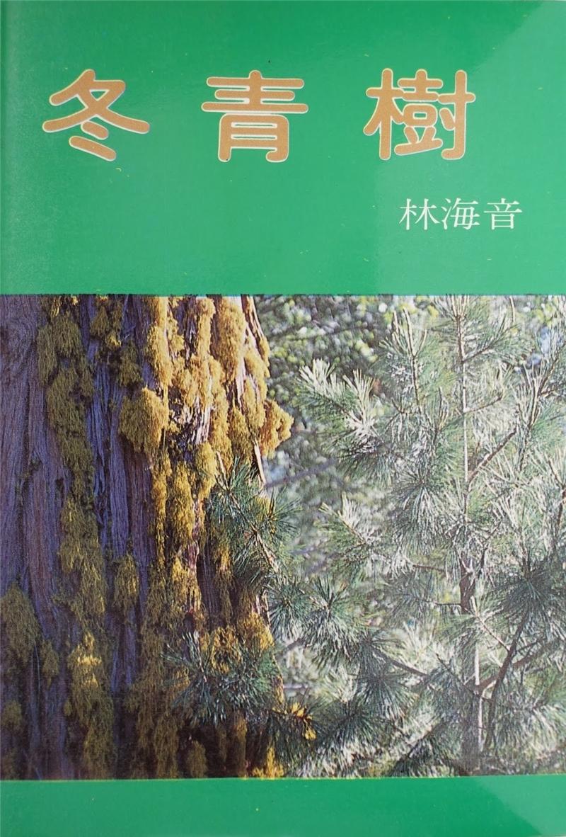 1987 冬青樹 (台北:純文學出版社,1980)