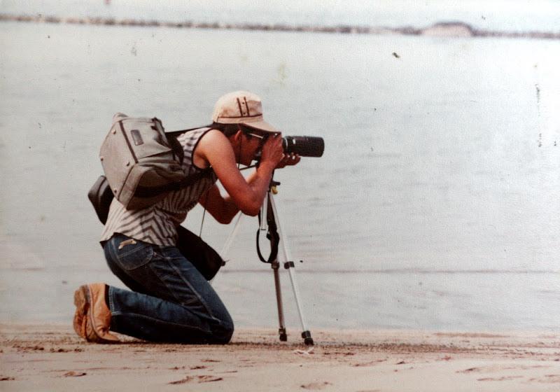 展開淡水河下游一年四季的鳥類觀察